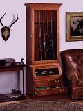 Free Display Cabinet For Firearms Plan