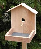 Free Bird Feeder Plan