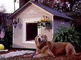 Deluxe Doghouse plans