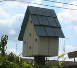 Birdhouse Wood plans