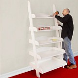 Ladder Shelf plans