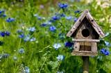 Free Natural Bird House Plan