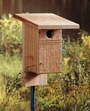 Wooden Bluebird House plans