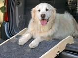 DIY Pet Ramp plans