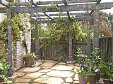 Free Grape Arbor Plan