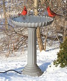 Bird Bath Pedestal plans
