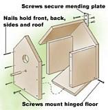 Build a Birdhouse plans